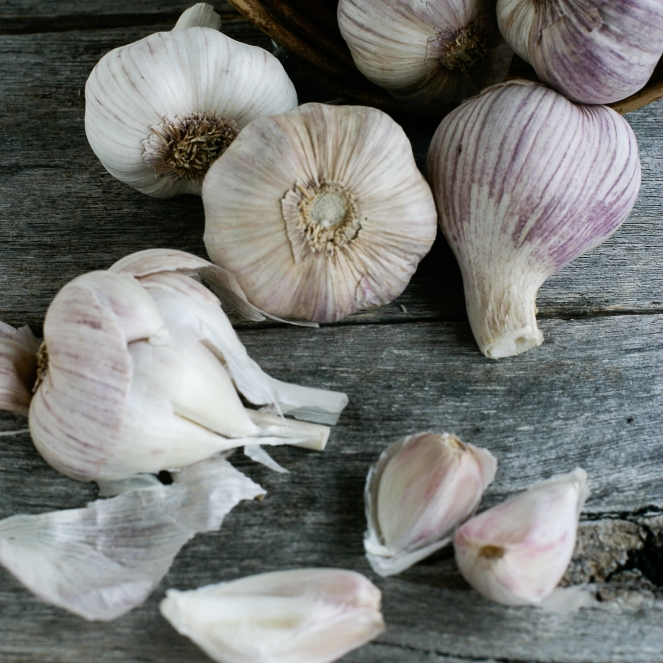 random garlic 2 (1 of 1).jpg