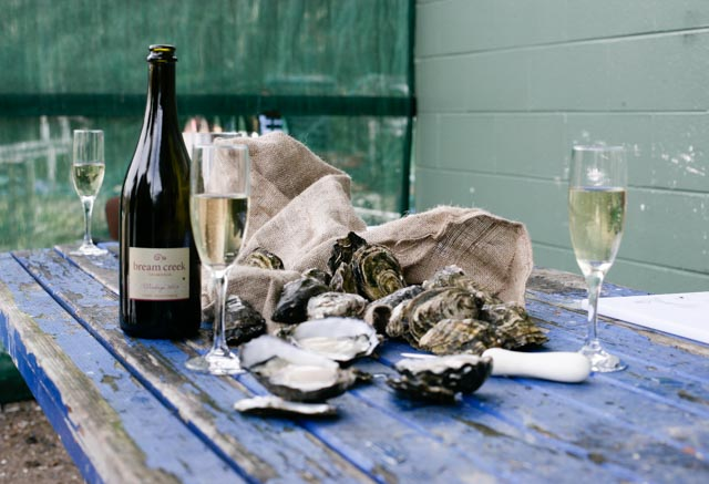 oysters and spark (1 of 1)